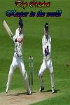 Cricket Keeper in the world screenshot 1/4