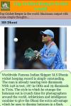 Cricket Keeper in the world screenshot 4/4