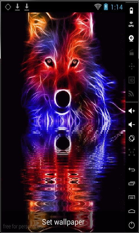 free colorful wolf live wallpaper apk download for android